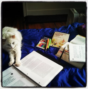 The Gracie wants you to help me do all this work more efficiently. (Image: a fluffy white cat stretched out on a bed, which is covered in books.)